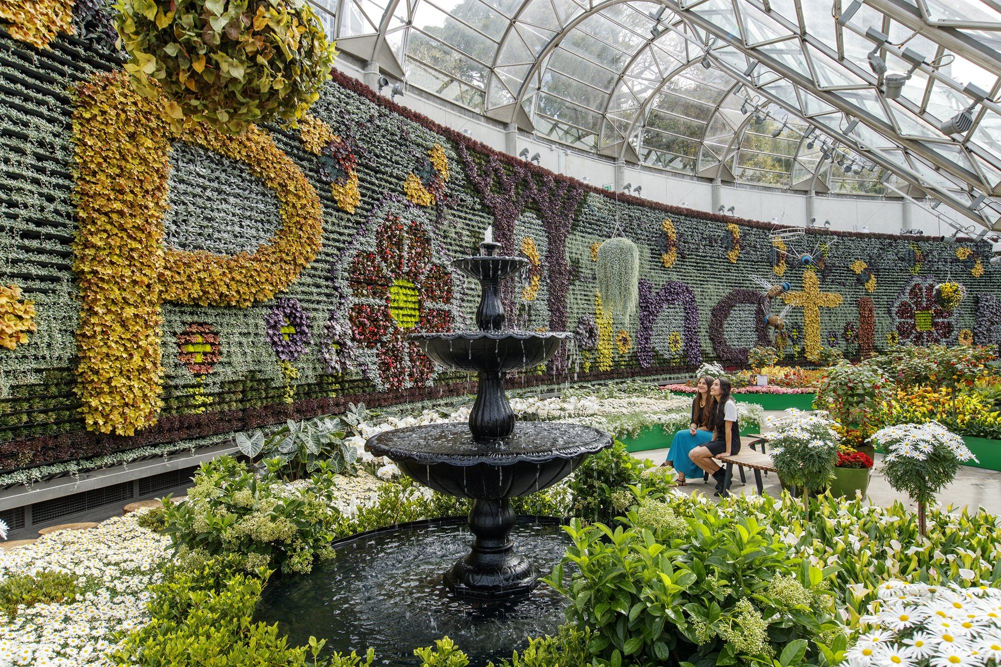 News kids connecting nature for Landscape gardeners sydney